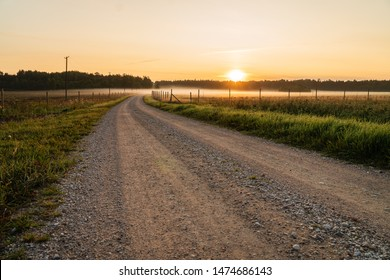 Dirt road leading to fog and sunrise - calm autumn morning in rural area