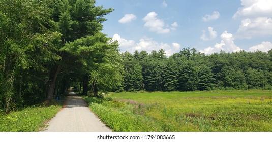 Dirt road leading past a field, Massachusetts