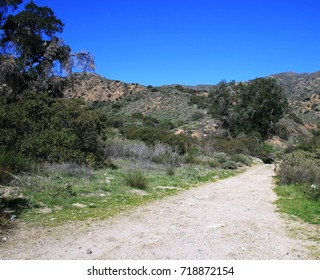 Dirt road leading toward hills in a rural area, California