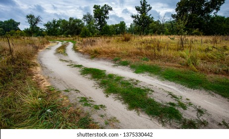 dirt road in the meadow against the background of deciduous forest. Spring season. Ukraine. Europe.