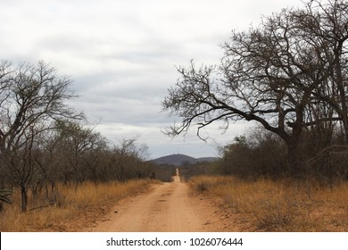 A dirt road meandering through dry african bush, with a grey cloudy sky