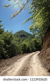 dirt road in mountain of Serbia