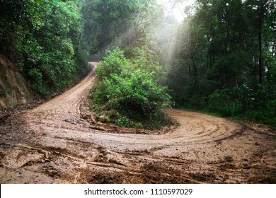 Dirt road or mud road and rain forest