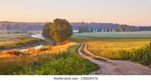 Dirt road on riverbank wild meadow in morning mist panorama. Rural summer landscape in sunrise light. Colorful calm farmland pasture scene, Belarus