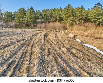 dirt road and puddles in the forest. Spring
