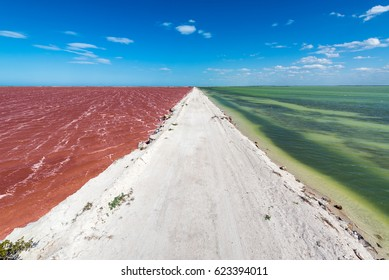 Dirt road with red water on one side and green water on the other with a beautiful blue sky by the town of Las Coloradas near Rio Lagartos, Mexico