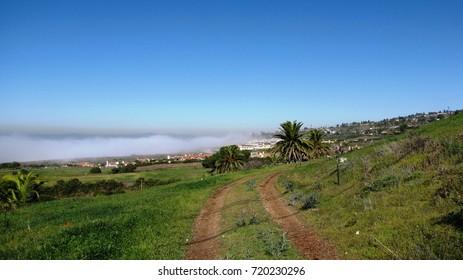 Dirt road running along a grassy hillside by the ocean, California