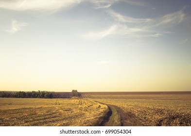 A dirt road running through the field after harvesting. Evening time at the end of summer.