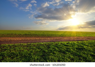 dirt road runs along the field with green grass at sunset