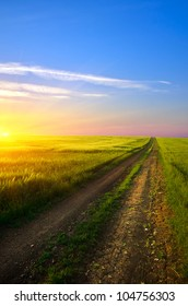 dirt road runs along the field with green grass at sunset