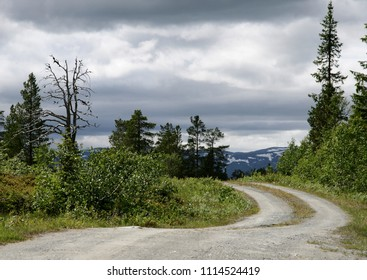 Dirt road in a rural landscape
