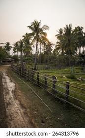 Dirt road in rural of Thailand.