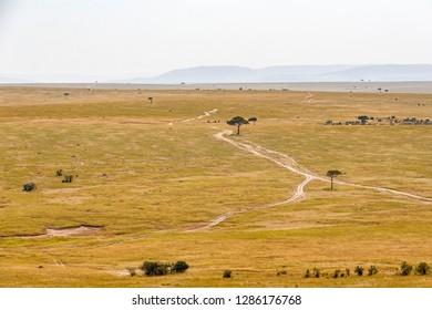 Dirt road at a savanna landscape in Africa