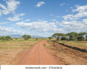 Dirt road in savanna plain. Lake Manyara National Park, Tanzania, Africa.