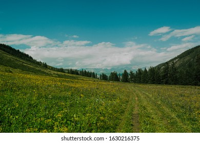 dirt road with summer valley, forest and mountain range on horizon - Shutterstock ID 1630216375