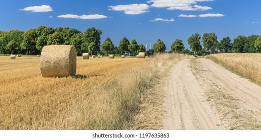 Dirt road through agricultural landscape with grain fields with straw bales near Lüneburg in Lower Saxony, Germany