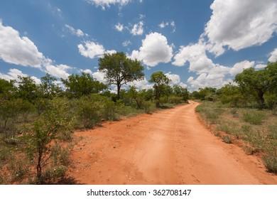 Dirt road through the dry landscape of Hoedspruit