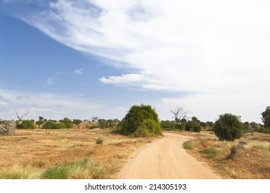 Dirt road through dry savanna landscape in Tsavo East National Park in Kenya.