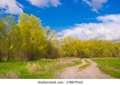 Dirt road towards the forest, beautiful spring landscape