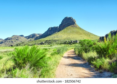Dirt road towards mountains. Shot in Krakadouw, Cederberg Mountains, near Clanwilliam, Western Cape, South Africa.
