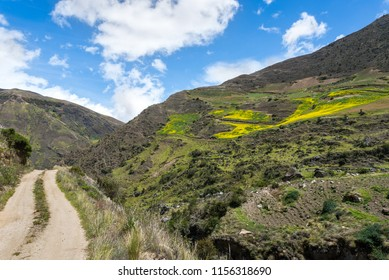 Dirt road in the venezuelan Andes mountains