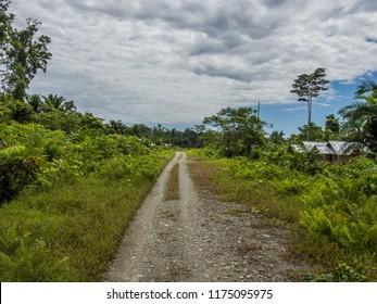 Dirt road via the jungle. near the Dekai village, West Papua, Indonesia