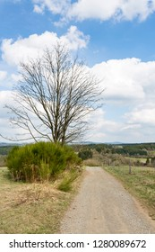 A dirt road with view over the southern Eifel hills near Daun, Germany.