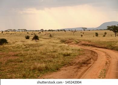 A dirt road winds through the African savannah
