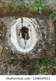 Dirty and abandoned inhospitable squat toilet