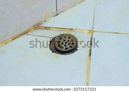 Dirty Bathroom Floor Black Mold Growing Stock Photo Edit Now