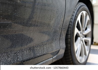 dirty black car with water stained dry