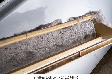 Dirty drier vent filled with lint from clothes