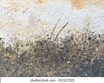Dirty fungus or mold on the wall texture background