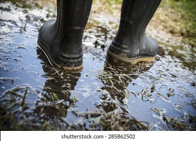 Dirty galoshes (rubber boots) in puddles and muddy