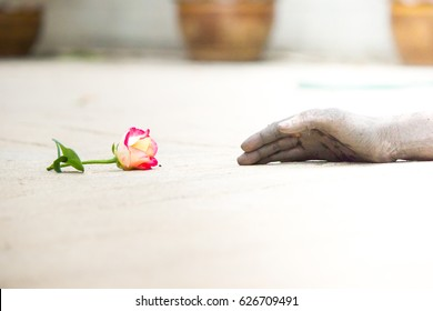 Dirty hand holding rose. Concept of contrast status of people. Flower meanings high and hand meanings low. With grain and noise filter effect.