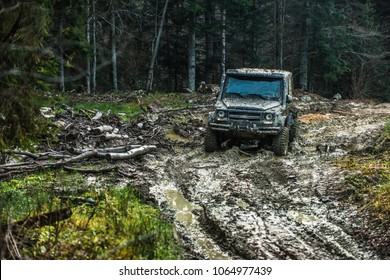 Dirty offroad car with dark forest on background. SUV covered with mud on countryside road. Crossover racing on sunny day. Extreme entertainment and driving concept.