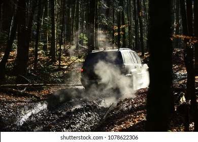 Dirty offroad car with fall forest on background on sunny day. SUV covered with mud on path covered with leaves. Crossover with red light turned on, driving with cloud of smoke. 4x4 racing concept.
