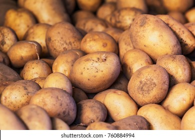dirty raw potatoes in large quantity, not washed