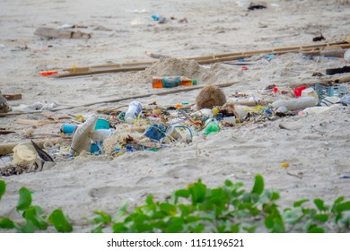 Dirty sand beach with various garbage such as plastic bottles, fishing nets,foam food boxs, bamboo logs, coconut fruit, glass bottles etc.