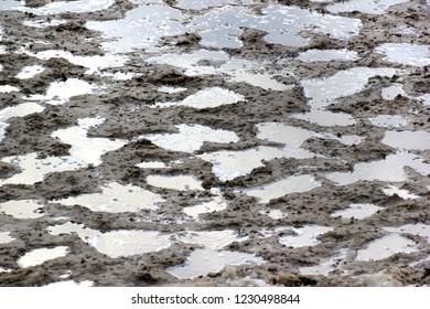 Dirty slushy snow, urban winter concept background