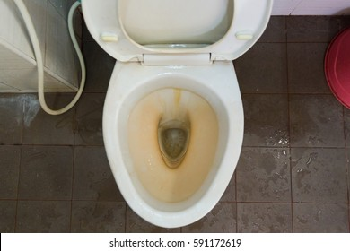 dirty toilet in a house.