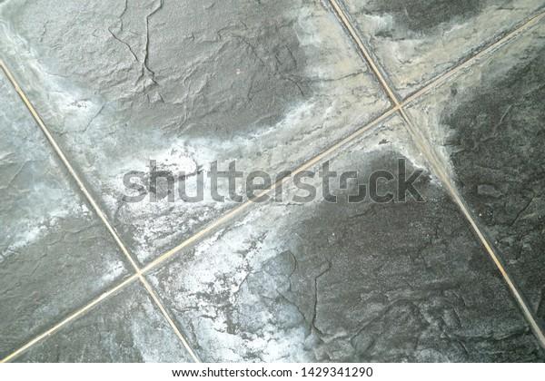 Dirty White Mold On Black Tiles Stock Photo Edit Now 1429341290