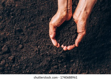 Dirty woman hands holding dark moist soil. Agriculture, organic gardening, planting or ecology concept. Environmental, earth day. Banner. Top view. Copy space. Farmer checking before sowing.