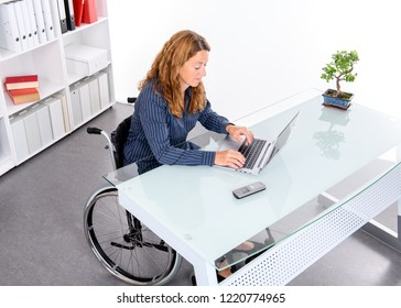 disabled businesswoman in wheelchair working  in the office