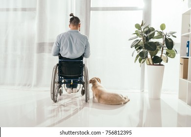 disabled man on wheelchair and his dog in front of window