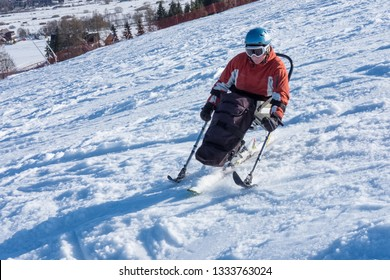 disabled person goes mono ski downhill skiing - rehabilitation and winter snow sports, handicapped athlete, slalom , Wheelchair Wandering