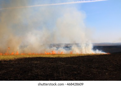 Disastrous steppe fire