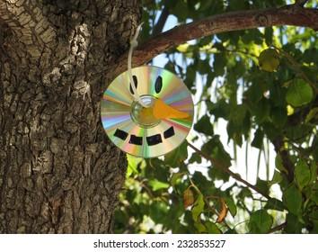 Disc Snowman