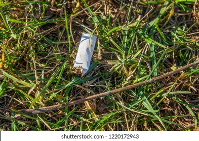 Discarded cigarette butt in the grass. The cigarette butt on the ground. Environment protection. Pollution of nature.