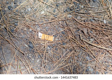 Discarded cigarette stub on the ground in nature. Forest park full of cigarette stub and rubbish from smokers who throw away lumps and slips everywhere and still. it is the disease of those people.